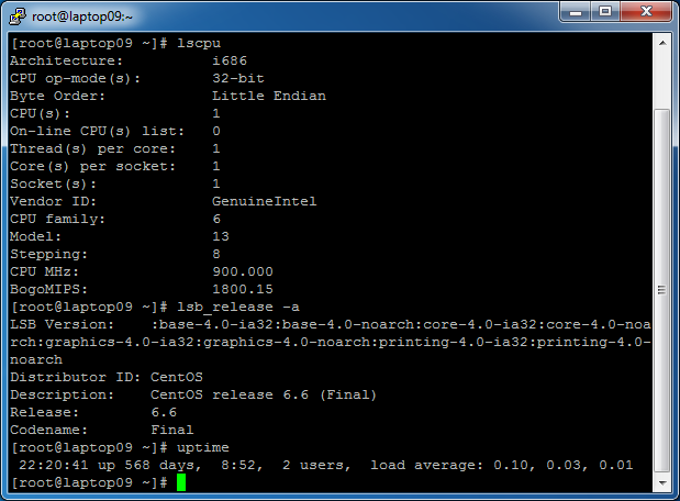 Screenshot of uptime